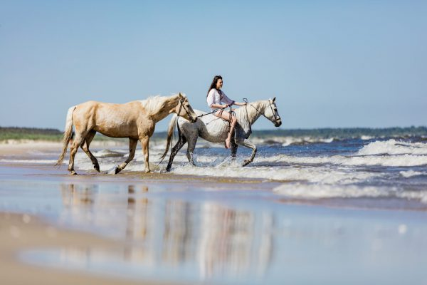 Young girl with two horses riding into the sea. Summer. Horseriding on a seashore.